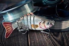 Attraits pour des poissons Photos libres de droits