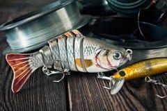 Attraits pour des poissons Image stock