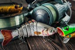 Attraits pour des poissons Photographie stock libre de droits