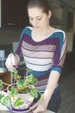 Attraktiv flicka som bevattnar en växt i kruka Royaltyfri Fotografi