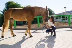 Attraktiv ung kvinna med hennes häst på stallen royaltyfri bild