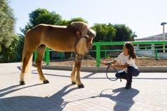 Attraktiv ung kvinna med hennes häst på stallen arkivbild