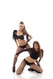 Attraktiva brunetter som poserar i erotiska dräkter Arkivfoton