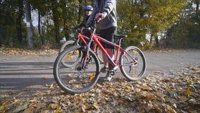 Attraktiva par som går med cyklar i hösten, parkerar Vektorillustration för din design långsam rörelse lager videofilmer