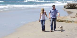 Attraktiva par som går på stranden med deras valp Royaltyfria Bilder