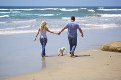 Attraktiva par som går på stranden med deras valp Fotografering för Bildbyråer