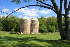 attraktiva silos kopplar samman Royaltyfri Foto