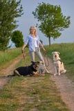 Attraktive blonde Frau auf einem ländlichen Weg mit ihren drei Hunden Lizenzfreie Stockfotos