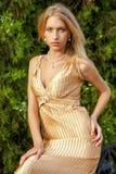 Attraktive Frau im Goldkleid Lizenzfreie Stockbilder