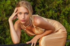 Attraktive Frau im Goldkleid Lizenzfreie Stockfotos