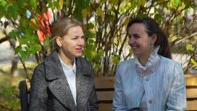 Attraktive Frau zwei, die in Autumn Park spricht stock video