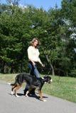 Attraktive gehende Frau ihr Hund stockbild