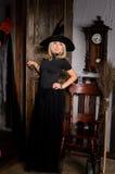 attraktive Halloween-Hexe im Schwarzen mit Besen Lizenzfreies Stockbild