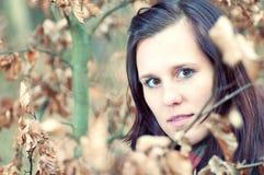 Attraktive junge Frau im Wald stockbilder