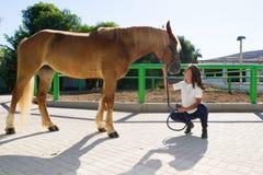 Attraktive junge Frau mitfühlend ein Pferd an Stockfotos