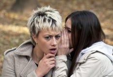 Attraktive junge Frauen, die Geheimnisse im Park flüstern Stockfotografie