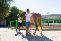 Attraktive junge Paare, die eine braune Pferdestute pflegen Stockfotos