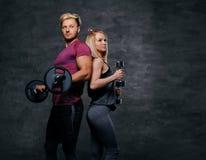 Attraktive sportliche Paare über grauem Hintergrund Stockbild