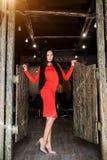 Attraktiver Brunette mit dem langen Haar und schlanken einer Zahl, die im kasern Kleid steht Schöne vorbildliche Aufstellung auf  stockfoto