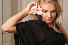 Attraktiver Gerbera Holding der jungen Frau stockfotografie