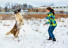 Attraktiver Junge und Mädchen, die mit einem Hund spielt lizenzfreies stockfoto