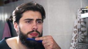 Attraktiver Mann interessiert sich seinen Bart Er wird sehr konzentriert stock video footage