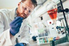 Attraktiver Student der Chemie arbeitend im Labor stockbilder