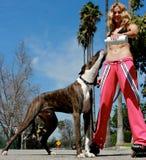 Attraktives blondes, ihr Hundewasser gebend Lizenzfreie Stockbilder