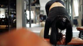 Attraktives sportliches kaukasisches Mädchen hebt das Verdrehen auf dem geeigneten Ball auf Eignungsfrau, die Übung auf der Press stock footage