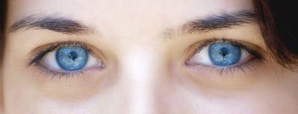 attraktivt öga Arkivbilder