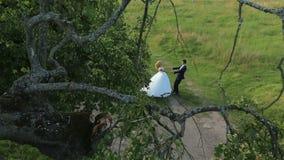Attraktivt bröllopparinnehav vid händer och virvla på den gröna ängen på bröllopsresa lager videofilmer