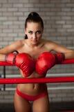 Attraktivt posera för brunett som är topless i boxningsring Arkivbild