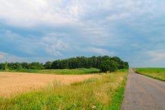 attraktivt väder Royaltyfri Fotografi
