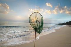 Attrapez le soleil Image libre de droits