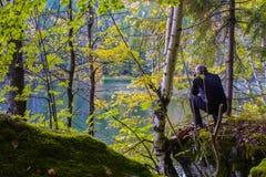 Attraverso gli alberi Immagini Stock