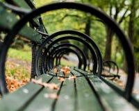 Attraverso i cicli del banco di parco Fotografia Stock
