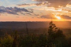 Attraverso il legno che gode del tramonto nella sera immagini stock
