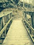 Attraverso il ponte Fotografie Stock Libere da Diritti