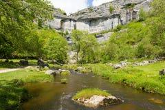 Attrazione popolare BRITANNICA dell'ospite del parco nazionale delle vallate di Yorkshire della baia di Malham fotografia stock