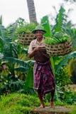 Attrazione turistica di Bali Venditore del cappello Fotografie Stock Libere da Diritti