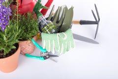 Attrezzatura degli strumenti di giardino Immagini Stock Libere da Diritti