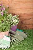 Attrezzatura degli strumenti di giardino Fotografie Stock