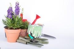 Attrezzatura degli strumenti di giardino Fotografia Stock Libera da Diritti