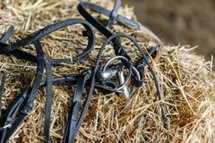 Attrezzatura del cavallo sull'mattoni freschi di fieno Fotografia Stock Libera da Diritti