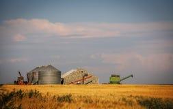 Attrezzatura dell'azienda agricola dietro un giacimento di grano dorato Fotografia Stock