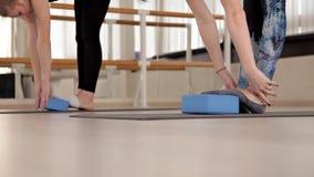 Attrezzatura di aerobica e di forma fisica Addestramento dell'equilibrio Donne che fanno una classe aerobica con gli scalatori de stock footage