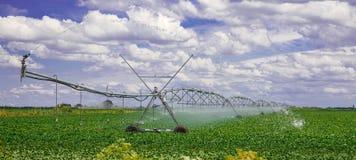 Attrezzatura di irrigazione sul campo dell'azienda agricola con le nuvole bianche Fotografie Stock Libere da Diritti