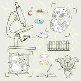 Attrezzatura di istruzione di biologia, cellule, icone di schizzo fotografia stock libera da diritti