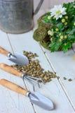 - Attrezzatura per la casa che fa il giardinaggio - piccoli strumenti di giardinaggio domestici Fotografia Stock Libera da Diritti
