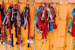 attrezzatura rampicante - corda blu e nera del carabiner, di rosso, sulla parete di legno, allenamento Immagini Stock Libere da Diritti